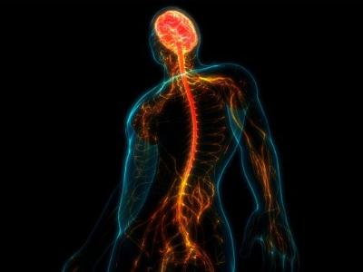 创新、技术和循证治疗脊髓损伤